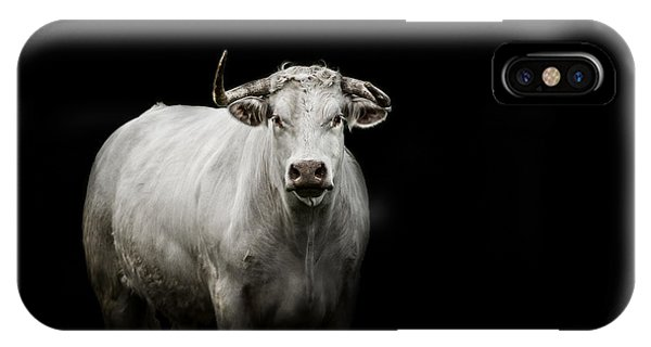 Bull iPhone Case - The Guardian by Paul Neville