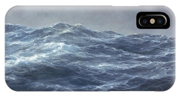 The Gull's Way IPhone Case