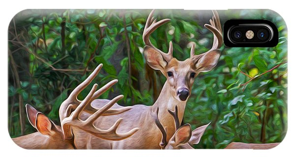 White Tailed Deer iPhone Case - The Guys Grab A Bite by Laura D Young