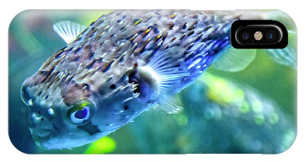 Salt Water iPhone Case - The Happy Puffer by Betsy Knapp