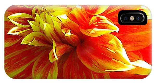 The Heart Of A Dahlia #2 IPhone Case