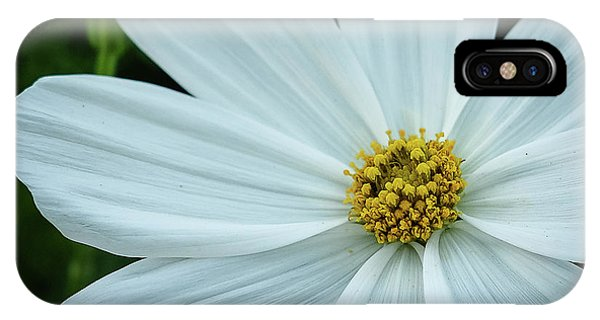 The Heart Of The Daisy IPhone Case