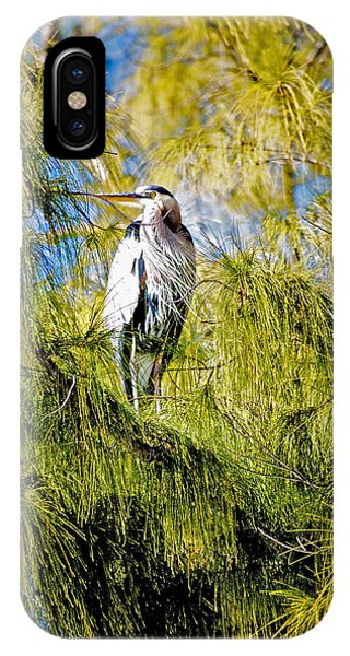 The Heron's Whiskers IPhone Case