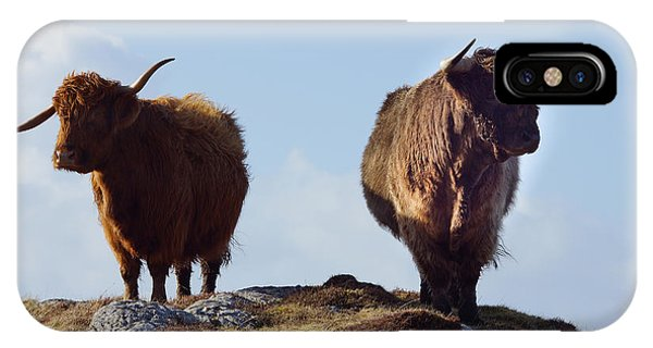 Glen iPhone Case - The Highland Cows by Smart Aviation