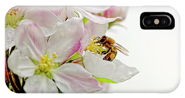 Honeybee iPhone X Case - The Honeybee And The Apple Blossom by Sharon Talson