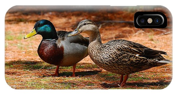 The Honeymooners - Mallard Ducks  IPhone Case