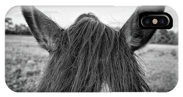the Horses of Blue Ridge 6 IPhone Case