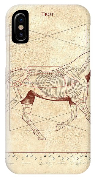 The Horse's Trot Revealed IPhone Case