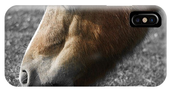 Eating iPhone Case - The Hungry Horse by Smart Aviation