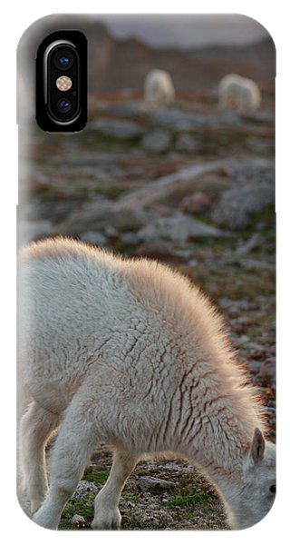 Fourteener iPhone Case - The Kids Table by Mike Berenson