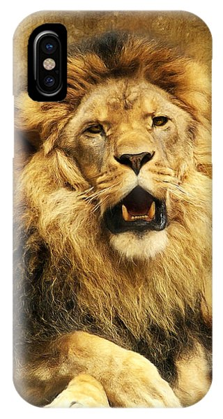 Lions iPhone Case - The King by Angela Doelling AD DESIGN Photo and PhotoArt