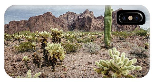The King Of Arizona National Wildlife Refuge IPhone Case