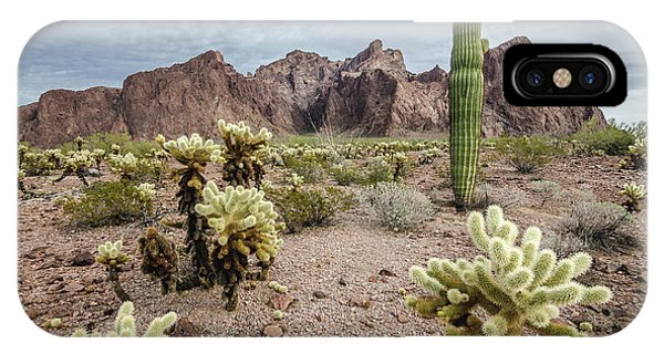 The King Of Arizona National Wildlife Refuge IPhone Case