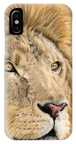 Color Pencil iPhone Case - The King by Sarah Batalka