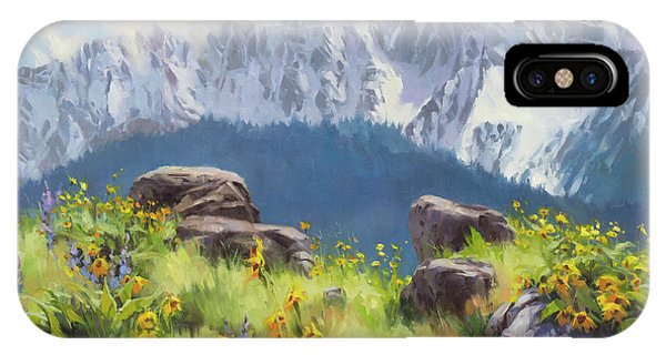 Bucolic iPhone Case - The Land Of Chief Joseph by Steve Henderson