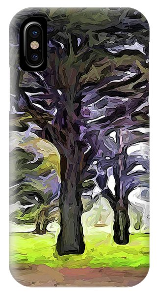 The Landscape With The Trees In A Row IPhone Case