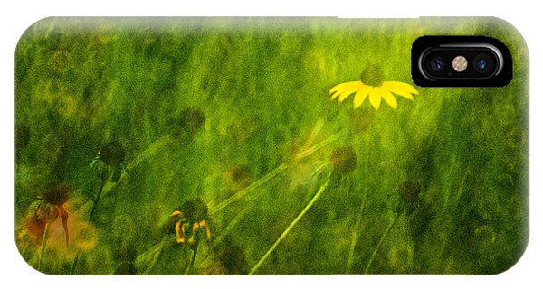 The Last Black-eyed Susan IPhone Case