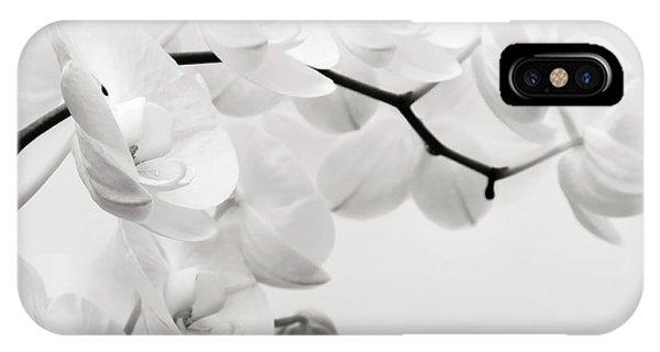 Moth iPhone Case - The Last Orchid by Wim Lanclus