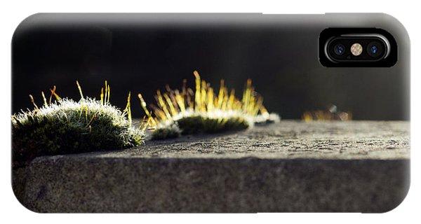 The Last Sun Of December IPhone Case