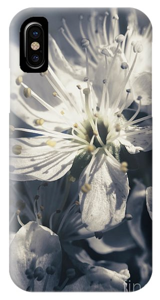 Garden Wall iPhone Case - The Light Of Spring Petals by Jorgo Photography - Wall Art Gallery
