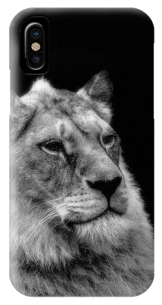 The Lioness Sitting Proud IPhone Case