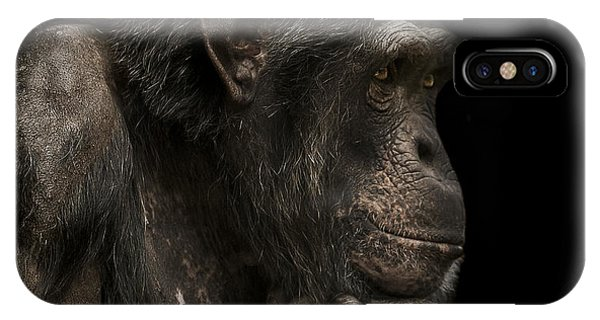 Chimpanzee iPhone Case - The Listener by Paul Neville