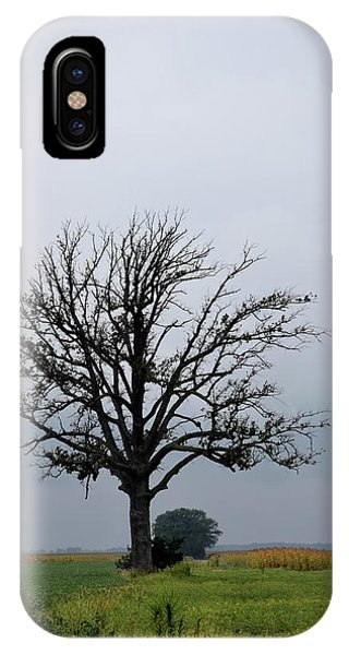 The Lonely Tree IPhone Case