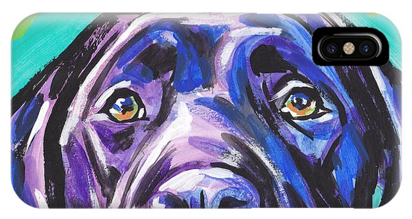 Retriever iPhone Case - The Look Of Lab by Lea S