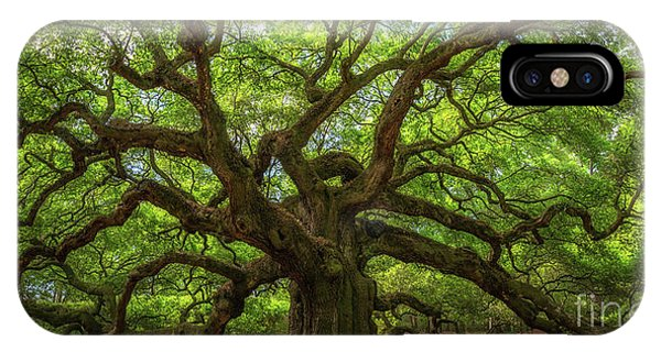 Michael iPhone Case - The Magical Angel Oak Tree Panorama  by Michael Ver Sprill