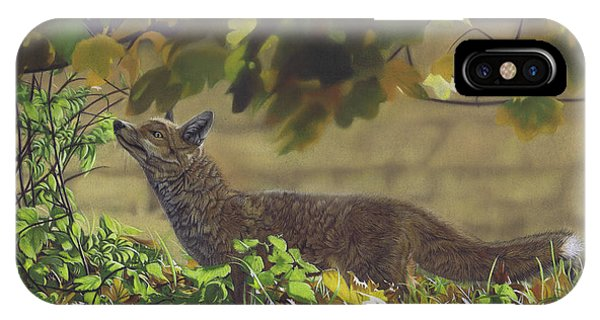 The Fantastic Mr Fox IPhone Case