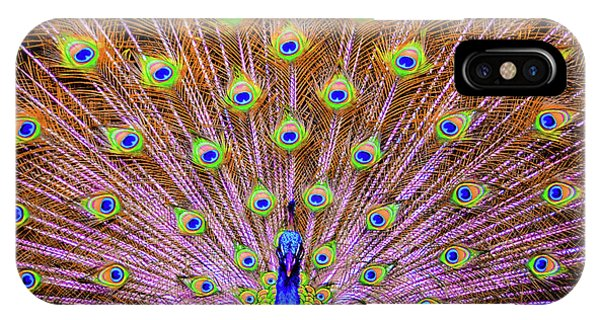 The Majestic Peacock IPhone Case