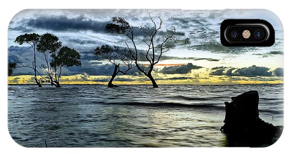 The Mangrove Trees IPhone Case