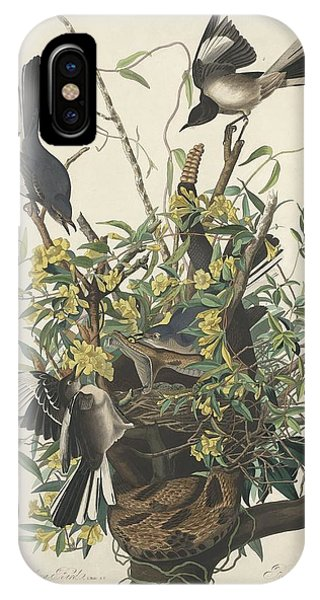 Mockingbird iPhone Case - The Mockingbird by Dreyer Wildlife Print Collections