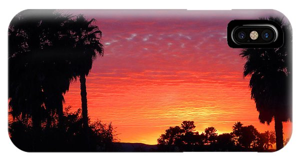 The Moody Views IPhone Case