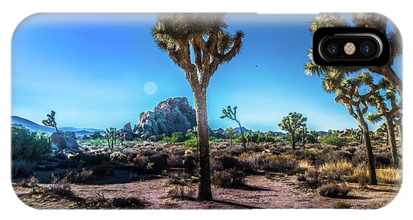 The Morning Joshua Tree  IPhone Case