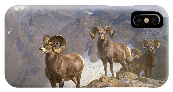 Rocky Mountain Bighorn Sheep iPhone Case - The Mountaineers-big Horn Sheep On Wilcox Pass by Rungius Carl
