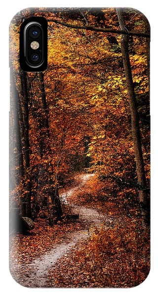 Foliage iPhone Case - The Narrow Path by Scott Norris