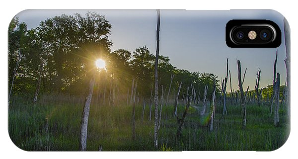 The New Jersey Pine Barrens IPhone Case