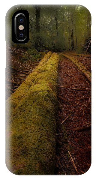 The Old Mossy Trunk IPhone Case