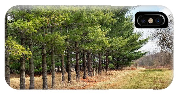 Treeline iPhone Case - The Old Pine Lane by Michael Fields