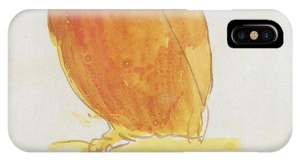 Parakeet iPhone Case - The Orange Color Bird by Edward Lear