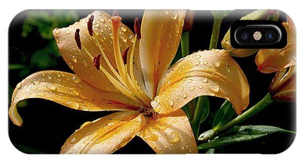 The Orange Lily IPhone Case