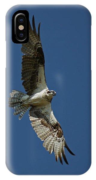 The Osprey IPhone Case