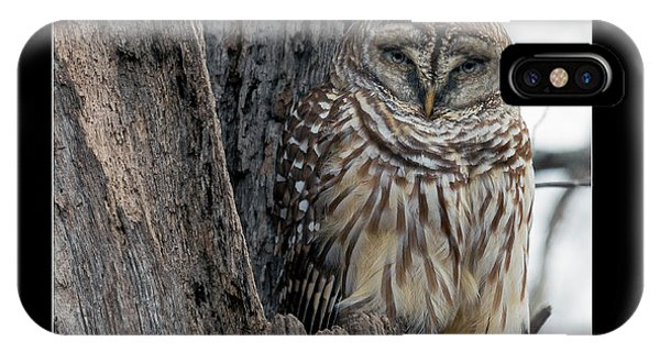 Mottled iPhone Case - The Owl by Betsy Knapp