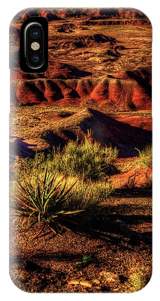 The Painted Desert From Kachina Point IPhone Case