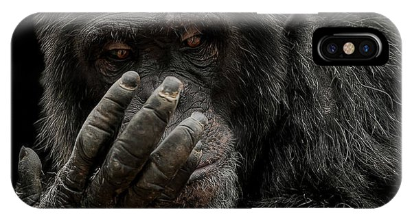 Chimpanzee iPhone Case - The Palm Reader by Paul Neville