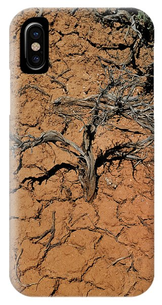 The Parched Earth IPhone Case