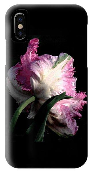 The Parrot Tulip Queen Of Spring IPhone Case