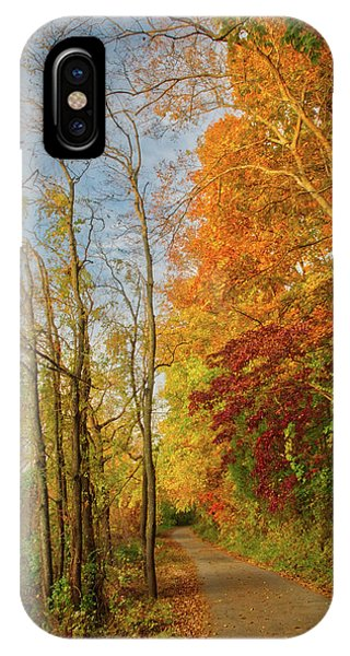 IPhone Case featuring the photograph The Path In Fall by Mark Dodd