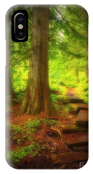 The Path Through The Forest IPhone Case